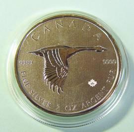 Kanada 10 $ 2020 - Goose / Gans - 2 oz BU