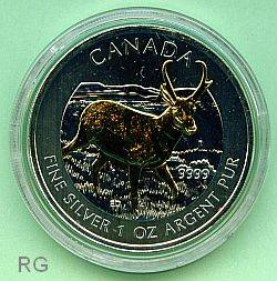 Kanada 5 $ Antilope 2013 (1oz) teilvergoldet