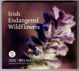 Irland offizieller KMS 2020 - Bedrohte Wildblumen - stgl.
